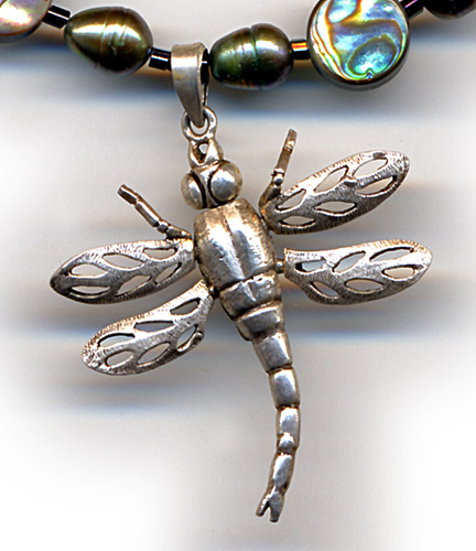 close-up of silver dragonfly from Laos