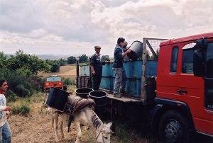 unloading the donkey