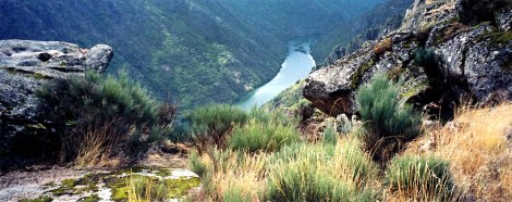 the river 'Duoro' carries on into Spain where it is called 'el Rio Duero'