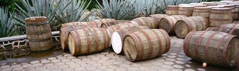 Blue Agave & Oak Barrels