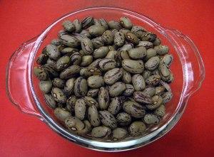 Flor de Mayo Beans