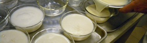 pour the mixture into custard cups