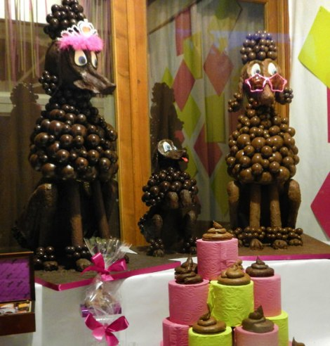 chocolate poodle turds