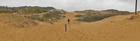 dunes near De Panne