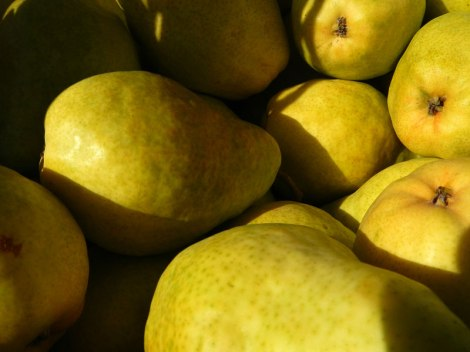 Bartlett pears for sale in the Okanogan