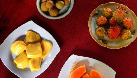 Mekong fruit-tasting