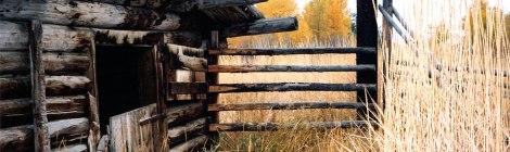abandoned log cabin in the hills above Merritt