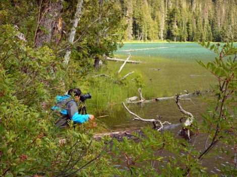 A photographer lurks in the bushes at Lower Joffre Lake