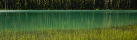 The glacial turquoise waters of Lower Joffre Lake up past Whistler, BC