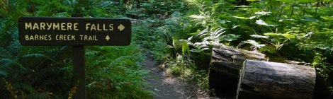 Sign on the trail to Marymere Falls in Olympic National Park