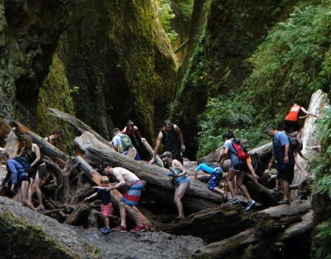Oneonta Gorge on Historic Hwy 30 in Oregon