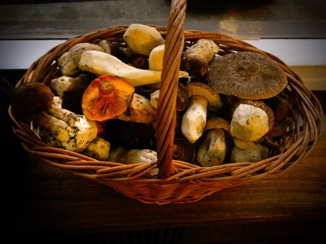Basket of Mushrooms in Pub