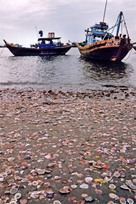 Mui Ne Fishing Village: Scallop Shells on the Beach