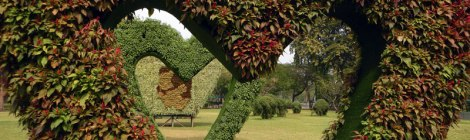 Bangkok's Lumpini Park Heart-Shaped Shrubs