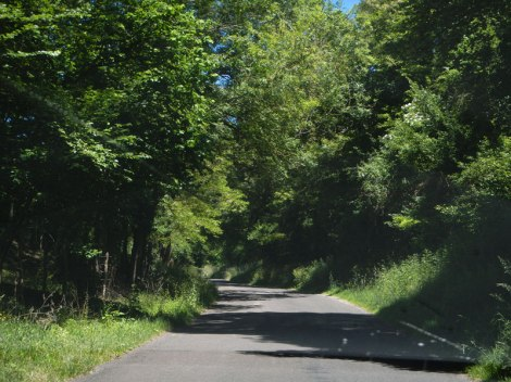 A Rural Road from Giverny