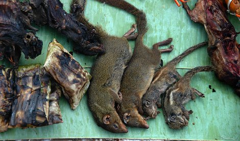 The Laos diet is so protein poor that they will often eat rats for dinner...