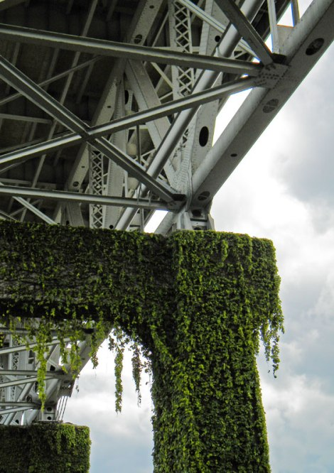 Vegetative bridge over Granville Island in Vancouver.