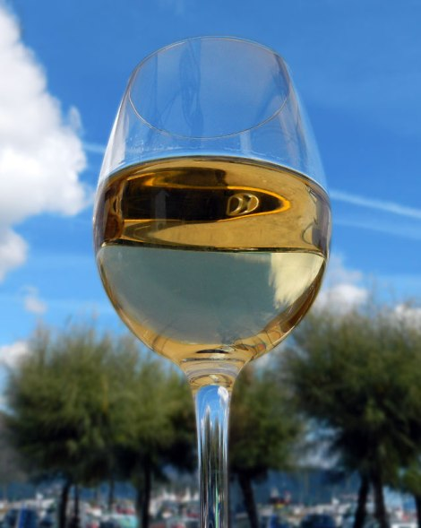 Albariño, the green wine of Galicia, Spain