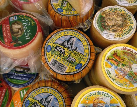 Cheese for sale in Ribadesella Market