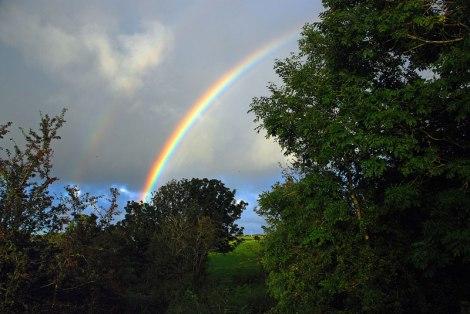 Rainbow behind Dark Hedges