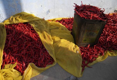 Red hot chiles for sale in Bundi, India