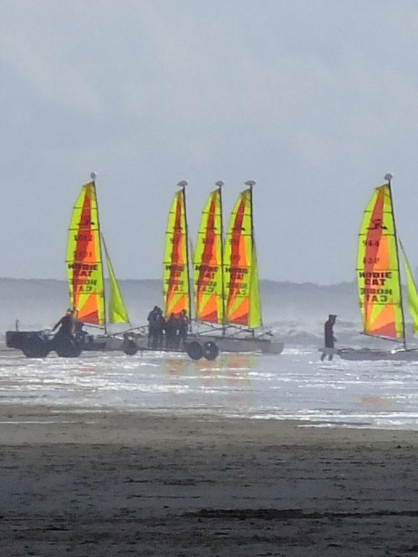 Windsurfers on the coast of Holland
