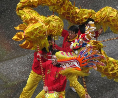 The Chinese New Year dragon dance acrobatics