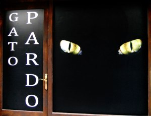 Cat's eyes stare out from the Gato Pardo sign in Viveiro, Spain