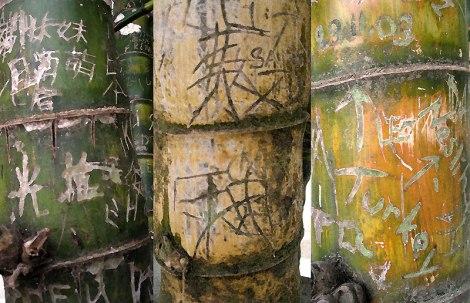 Graffiti on Hong Kong bamboo