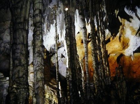 Cuevas Tito Bustillo