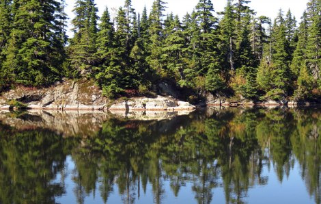 Mirrored reflection on Cabin Lake on top of Cypress Mountain in West Vancouver