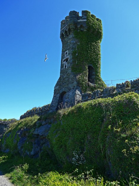 Overgrown ruins of a castle tower (Anglesey, Wales)