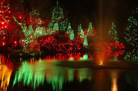 Christmas lights Van Dusen Gardens in Vancouver, Canada