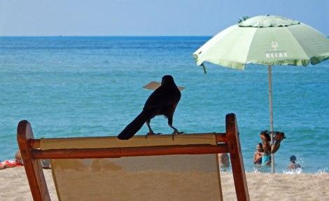 Beach chair in Puerto Vallarta
