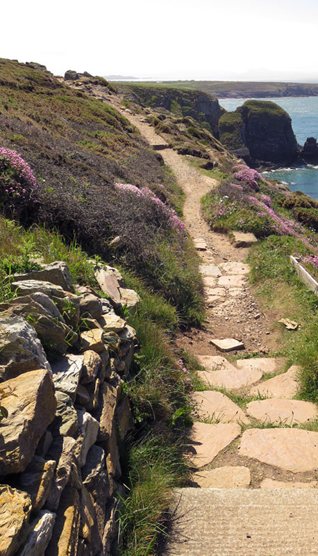 Pathway at Holyhead South Stacks, Wales
