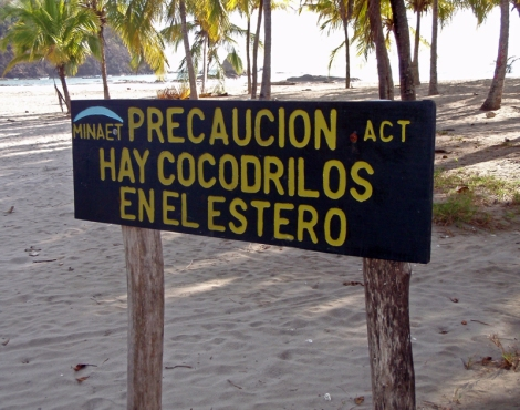 cocodrilos sign in Costa Rica