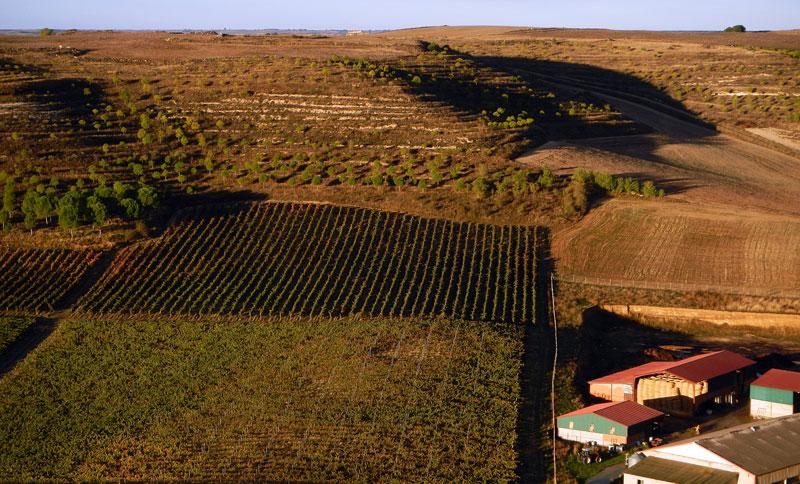 View from the Castillo de Curiel
