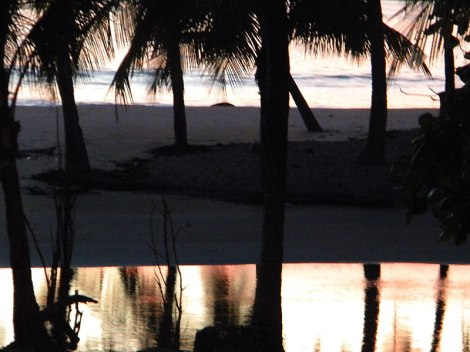 Reflection of sunset and palm trees at Carrillo Beach in Costa Rica