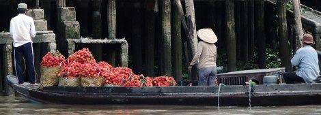 Taking Rambutan to the Floating Market at Can Tho on the Mekong River in Vietnam