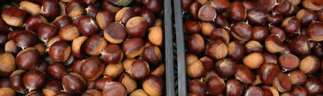 Chestnuts for sale in Santiago de Compostela in Spain