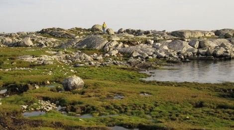 Rocky foreland at Gurteen Beach near Roundstone, Ireland