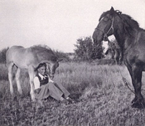 Dad with a horse and her colt