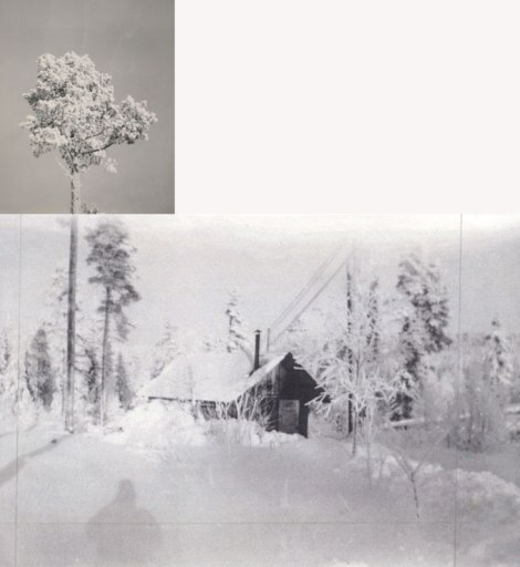 Dad's photo of a cabin in the snowy woods, probably Sweden