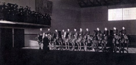 Horses put on a show at the Ollerup School Gymnastics in Denmark, 1941