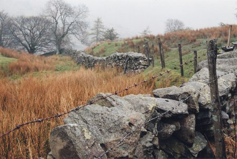 A stone and barbed wire fence in England's Lake District