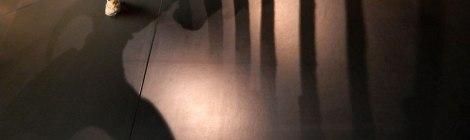 Bone shadows in the Copenhagen History Museum in Denmark
