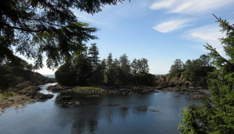 Vista of the Pacific Ocean from the Wild Pacific Trail in Ucluelet on Vancouver Island, Canada