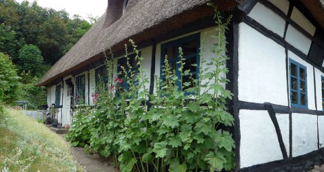 This thatched cottage in Nordenbro looks eerily like the one in Dad's painting