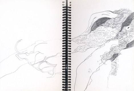 2017 fall trip to the Island sketch book with a drawing of a fallen Arbutus tree