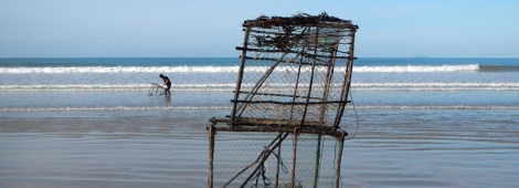 A man picking up a fish trap and stacking them up on a motorcycle cart on a beach in Koh Lanta, Thailand